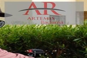 Artemis böcek ve haşere ilaçlama